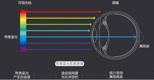 有害蓝光会对眼睛造成损伤(图片来源于网络)
