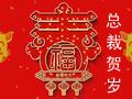 2019年数字视听行业百名总裁贺新春专题