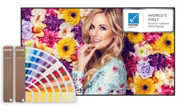 精准之色——明基睛彩系列设计屏上市