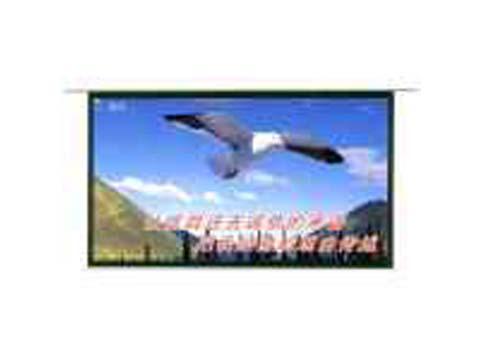 信鸽电动幕(84