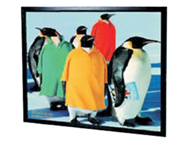 迪美视画框幕(200英寸)