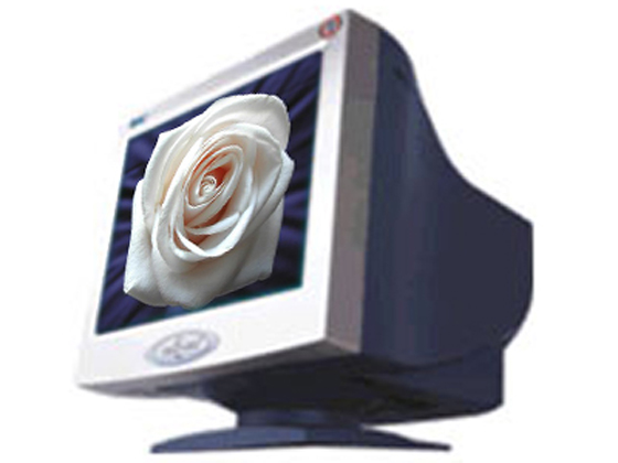 EMC(唯冠科技)DX-970+